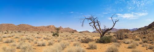 dry hot arizona desert